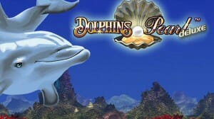 dolphins-pearl-deluxe-logo